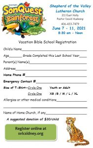 vbs2021 form